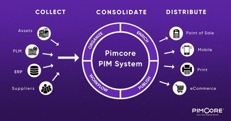 Cosa puoi fare con una soluzione PIM - Pimcpre